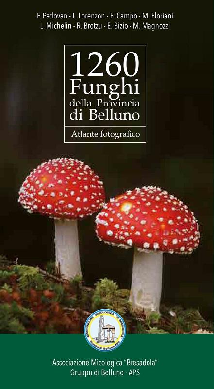 1260 Funghi della Provincia di Belluno